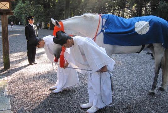 伊勢神宮の神馬たちは、毎月・「1日」、「11日」、「21日」の「午前8時頃」に「菊の紋章のついた馬着」を身にまとい神前に見参 (2)