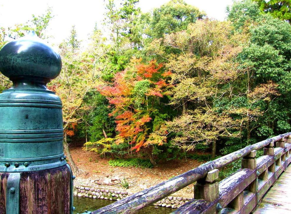 伊勢神宮「内宮・外宮」周辺・付近の紅葉のスポット (4)