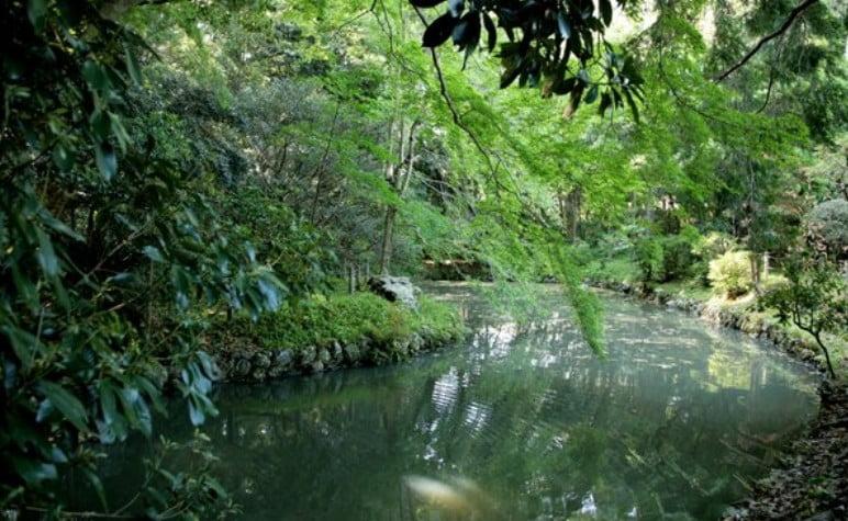 伊雑宮の「勾玉池」