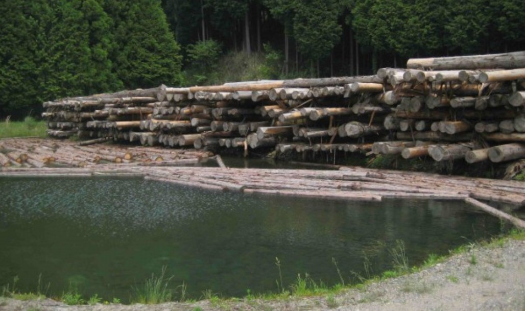 伊勢神宮で使用される素木について