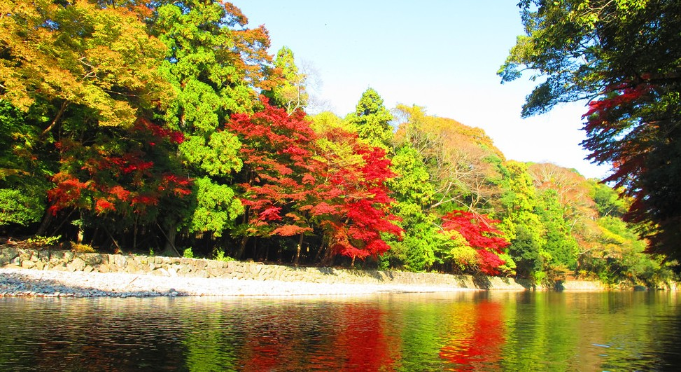 伊勢神宮・内宮「神苑」の秋と紅葉狩り